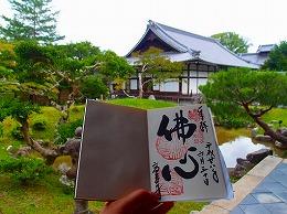 141 7月 京都.jpg